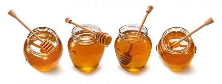 technical webinar sul miele e i prodotti dell'alveare